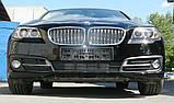 Декоративно-защитная сетка радиатора BMW 5 (F10) фальшрадиаторная решетка (ноздри), бампер, фото 9