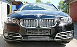 Декоративно-защитная сетка радиатора BMW 5 (F10) фальшрадиаторная решетка (ноздри), бампер, фото 10