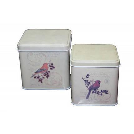 Набор из 2 жестяных банок для сыпучих продуктов Птицы, 200 и 300 г, фото 2