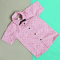 Детская рубашка для мальчика с бабочкой Турция размер 3-14 лет