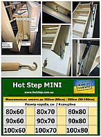 Теплі Сходи Hot Step MINI  80*60/70/80см
