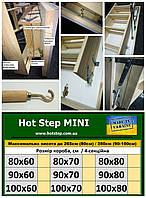 Теплі Сходи Hot Step MINI  90*60/70/80см