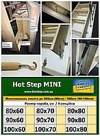 Теплі Сходи Hot Step MINI  100*60/70/80см