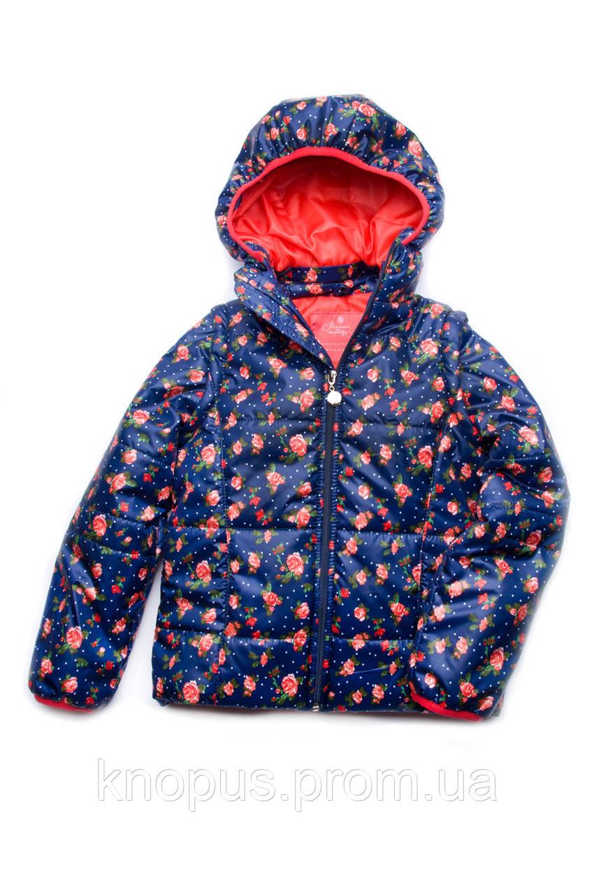 Куртка-жилет для девочки (темно-синий+розочки) (размер 110-128) , Модный карапуз