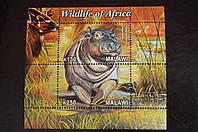 Малави. Фауна.  2011 год
