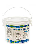 Кормовая добавка Canina Canhydrox GAG (GAG Forte) для собак, укрепление суставов и костей, 1200 шт