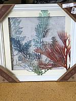 Картина объемная с 3D эффектом Растения 24х45см