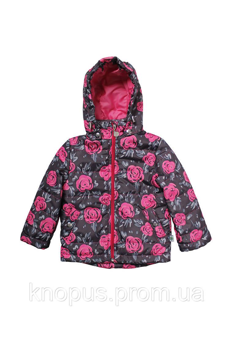 """Демисезонная куртка для девочки """"Розы"""", размер 86-104, Модный карапуз"""