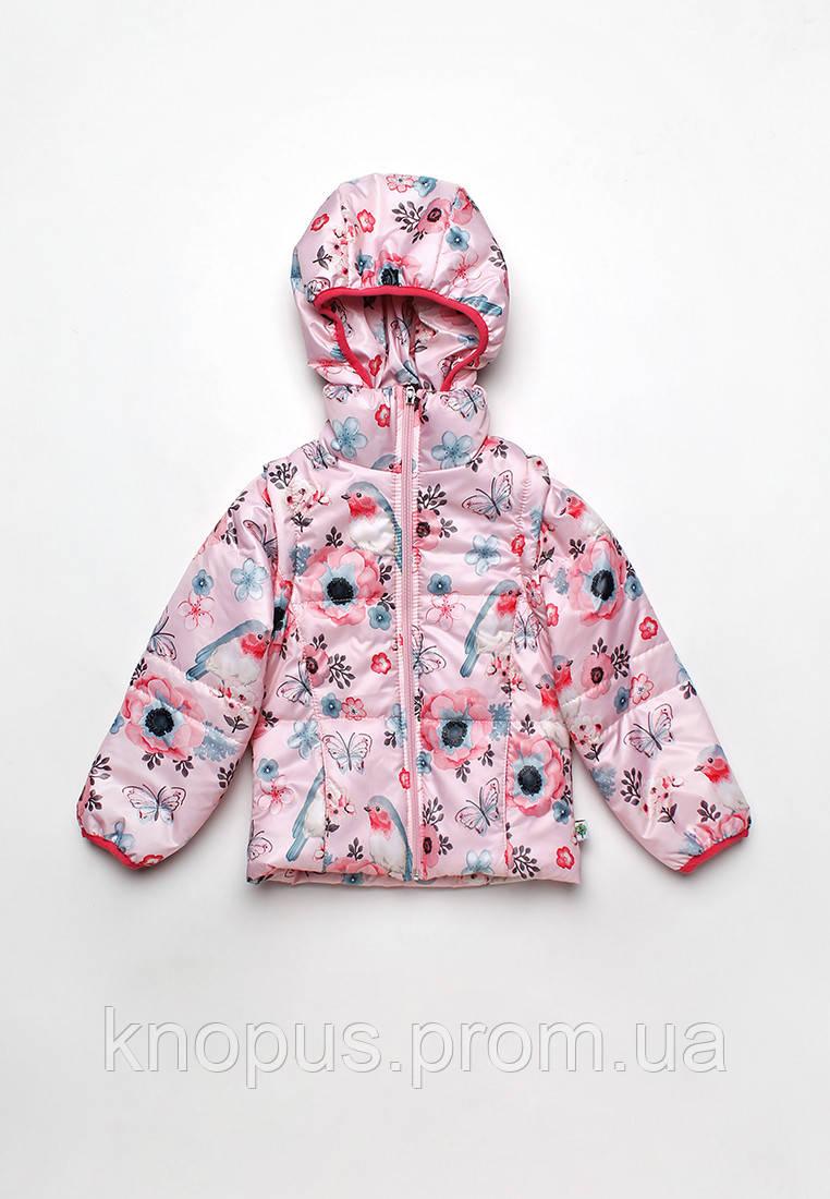 Демисезонная куртка жилетка для девочки, размеры 86-104, Модный карапуз
