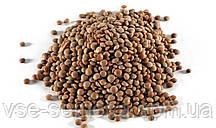 Чечевица коричневая 5 г (перефасовано Vse-semena)
