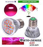 Фитолампа 14 Вт для растений, полный спектр, 220 В, фото 2