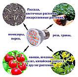 Фитолампа 14 Вт для растений, полный спектр, 220 В, фото 4