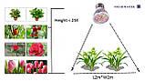 Фитолампа 14 Вт для растений, полный спектр, 220 В, фото 6
