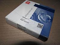 Кольца поршневые FIAT 2,8 TD 95,00 2,50 x 2,00 x 2,50 mm (пр-во NPR) 9-2091-60
