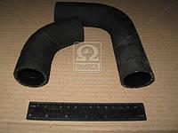 Патрубок радиатора МТЗ 80 2шт. (пр-во г.Волжский) 70-1303001/50-130306