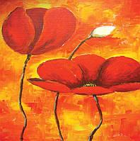 Картина раскраска 1 Вересня Огненные маки (950401) 30 х 30 см