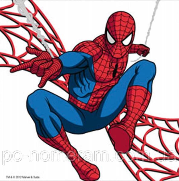раскраска на холсте 1 вересня человек паук 950974 25 х 25 см