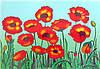 Картина раскраска  Маки  (7114)