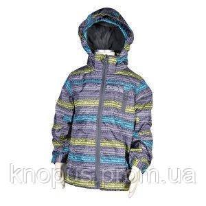 Демисезонная куртка (серая),  PIDILIDI, линейка BUGGA