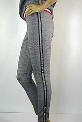 жіночі штани в сіру клітку  з лампасами Mari Time