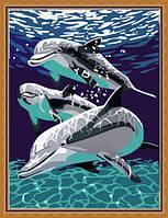 Раскраска по цифрам MENGLEI Дельфины играют (ME092) 30 х 40 см, фото 1