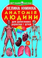 Велика книжка. Анатомія людини