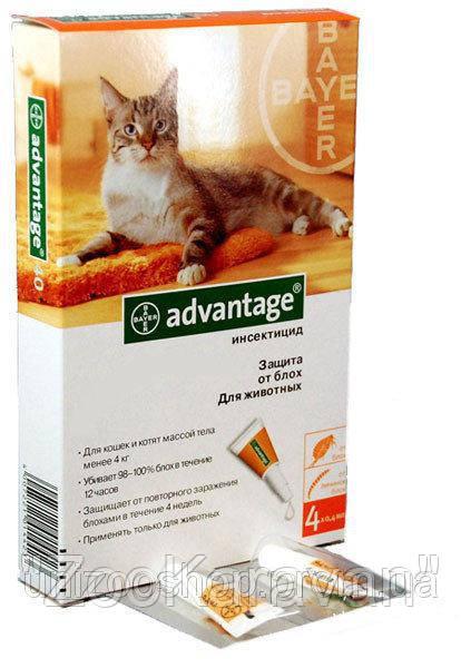 Advantage (Адвантейж) 40 Для кошек до 4 кг- 1 пипетка