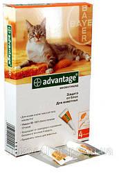 Advantage (Адвантейж) 40 Для котів до 4 кг - 1 піпетка
