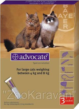 Адвокат для кошек до от 4 кг до 8 кг (1 пипетка), фото 2