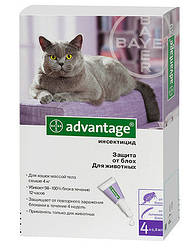 Advantage (Адвантейж) 80 Для кішок більше 4 кг - 1 піпетка