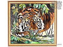 Картины из стела Тигр