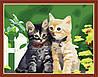 Набор для рисования MENGLEI Котята (MG180) 40 х 50 см