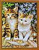 Раскраска по номерам MENGLEI Чудесные котята (MG181) 40 х 50 см