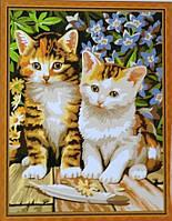 Раскраска по номерам MENGLEI Чудесные котята (MG181) 40 х 50 см, фото 1