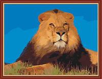 Раскраска по цифрам MENGLEI Лев (MG191) 40 х 50 см, фото 1