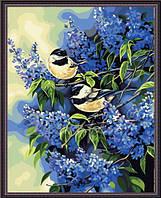 Картина по номерам MENGLEI Синички в сирени (MG216) 40 х 50 см, фото 1