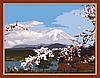 Картина по номерам MENGLEI Ветка сакуры (MG223) 40 х 50 см