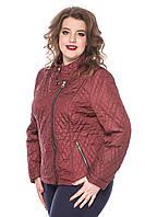 Куртка женская короткая размеры от 50 до 60, фото 1