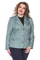 Куртка-пиджак женская короткая большие размеры