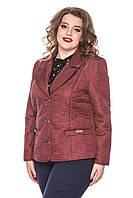 Куртка-піджак жіноча коротка розміри від 50 до 60, фото 1