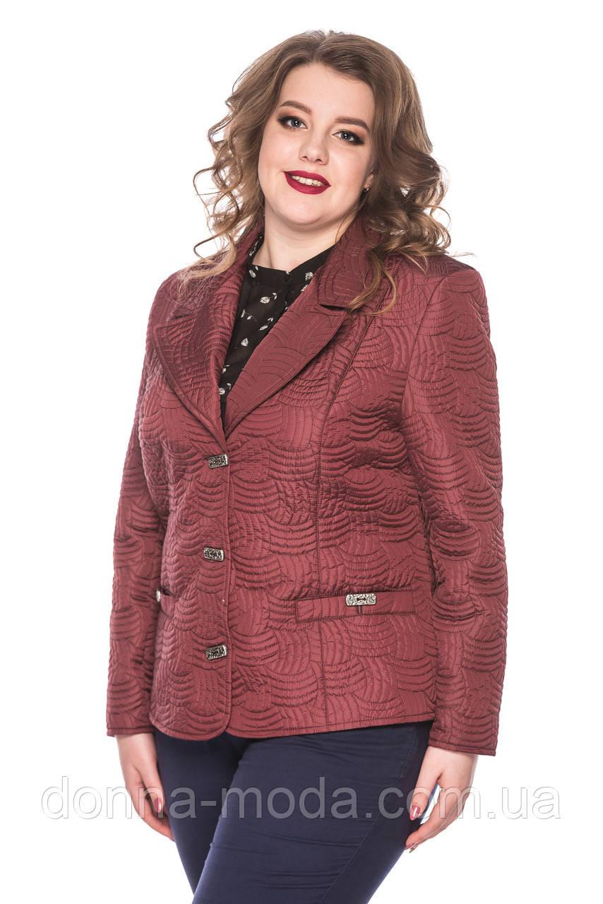 f6b0ba53bb7 Куртка-пиджак женская короткая размеры от 50 до 60 - интернет-магазин