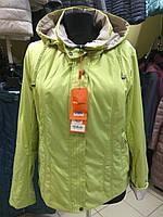 Коллекция весна осень, женская демисезонная куртка Mishele 10014 50, 52 размер , фото 1