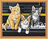 Картина раскраска MENGLEI Кошки на фортепиано (MG252) 40 х 50 см