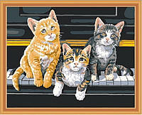 Картина раскраска MENGLEI Кошки на фортепиано (MG252) 40 х 50 см, фото 1