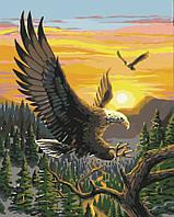 Раскраска по номерам MENGLEI Парящие орлы (MG312) 40 х 50 см, фото 1