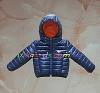 505fccf0a89a Куртки для Малышей — Купить Недорого у Проверенных Продавцов на Bigl.ua