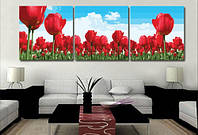 Раскраска по номерам MENGLEI Триптих. Тюльпаны (MT3027) Триптих 50 х 150 см, фото 1