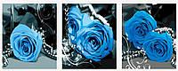 Картина по номерам MENGLEI Триптих. Синие розы  (MT3073), фото 1
