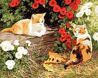 Раскраска по цифрам DIY Babylon Два кота худ Клейтон, Персис (VP133) 40 х 50 см