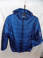 Куртка мужская весна-осень с капюшоном змейка на рукаве и надписью темно-синяя весна-осень Турция оптом